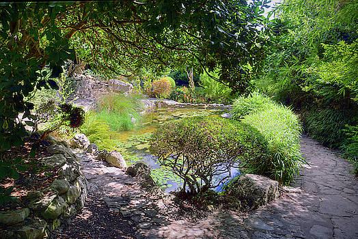 Garden by Savannah Gibbs