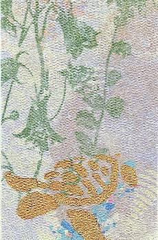 Garden Turtle by Susan Richards
