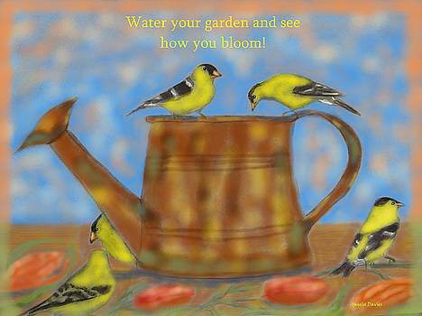 Garden Visitors by Angela Davies