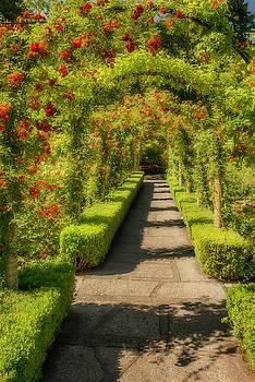 Thomas Gaitley - Garden Walk