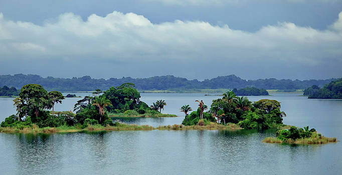 Gatun Lake Islands by Rick Lawler