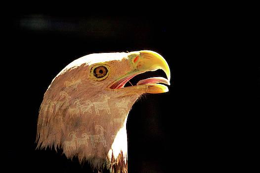 Genetic Imprint  by Eagle Finegan