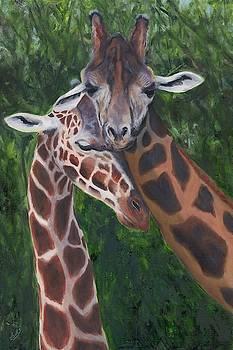 Gentle Courtship by Deborah Butts