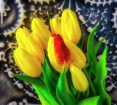 Georgeous Red Yellow Tulip In Bouquet by Garry Gay
