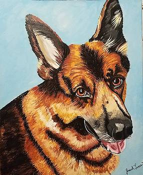 German Shepard  by Jennah Lenae