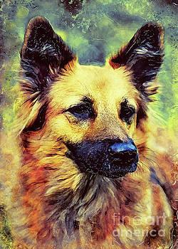 German Shepherd god by Justyna JBJart