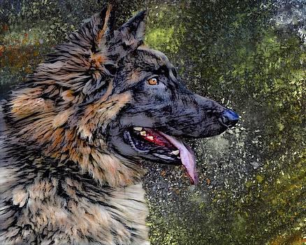 German Shepherd Portrait by Scott Wallace Digital Designs