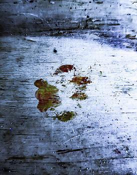 Ghost Kitten by Traci Asaurus