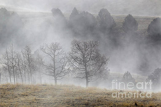 Ghostly Figures in Foggy Mine Country by Steve Krull