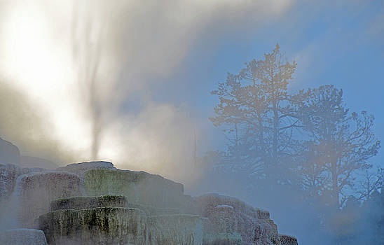 Ghostly Mammoth Terrace in Yellowstone by Bruce Gourley