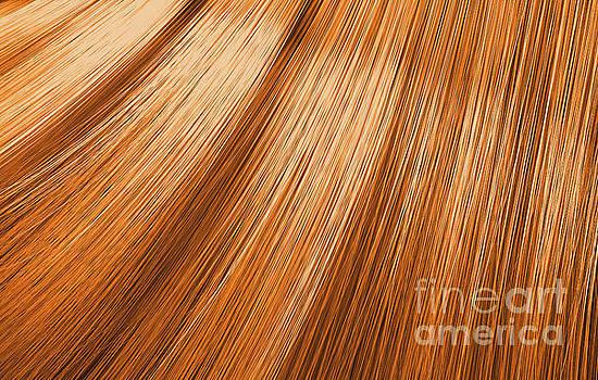 Ginger Hair Blowing Closeup by Allan Swart