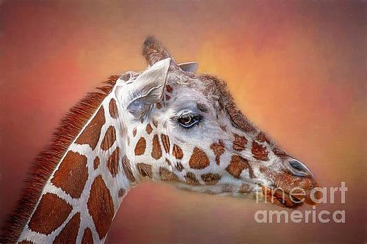 Giraffe by Warrena J Barnerd