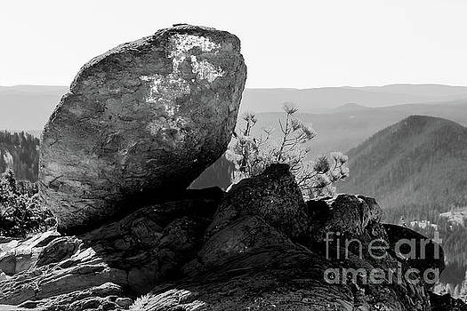 Glacial Erratic 2 by Mellissa Ray