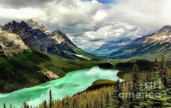 Campwillowlake - Glacial water of Peyto Lake - Alberta Banff Canada