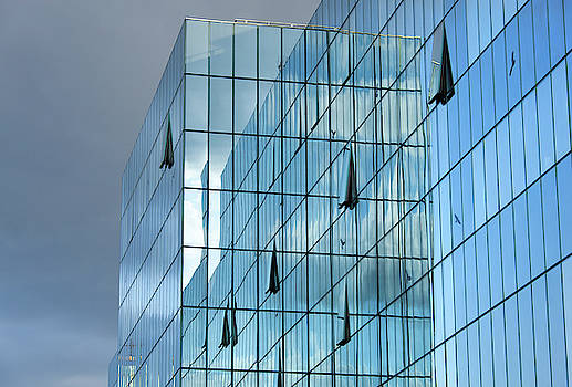 Ramunas Bruzas - Glass Cage
