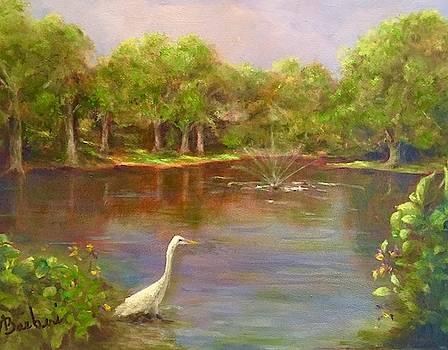Glen View by Anne Barberi