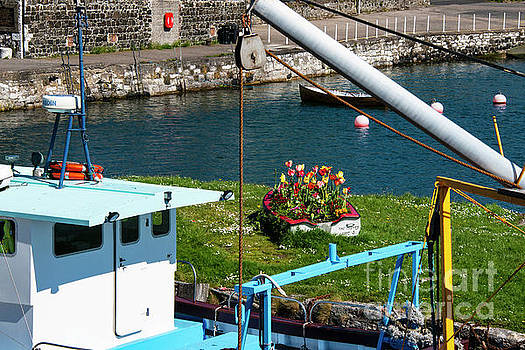 Bob Phillips - Glenarm Harbor Flower Boat