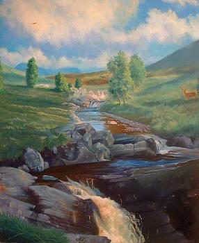 Glenlyon waterfall by Ashley Jennings