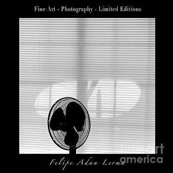 Felipe Adan Lerma - Glimpses - Cool in the Shade Poster