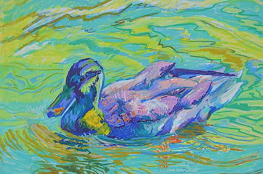 Glistening Duck by Aletha Kuschan