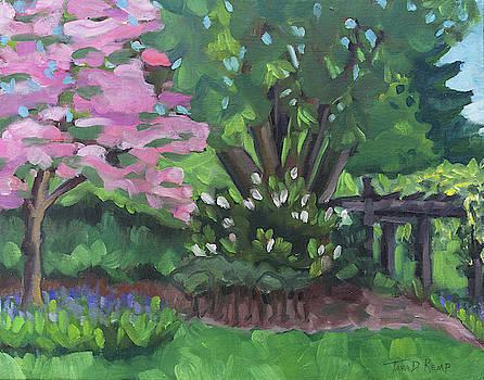 Glorious Dogwood by Tara D Kemp