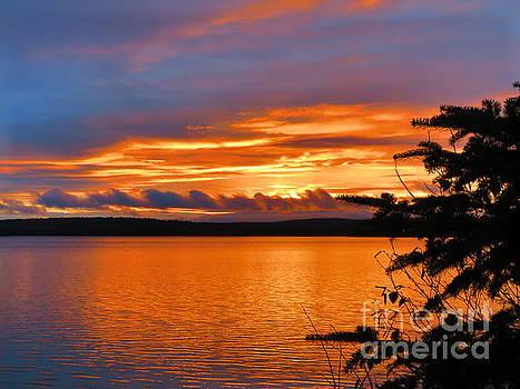Glorious sky by Brenda Ketch