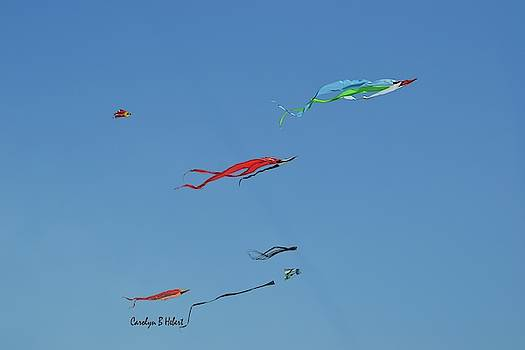 Go Fly A Kite by Carolyn Hebert