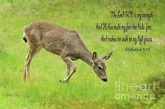God Is My Strength by Debby Pueschel