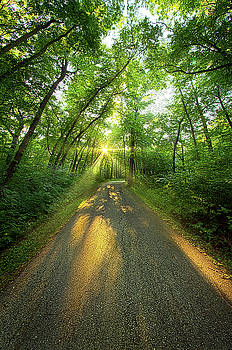 Going Places by Phil Koch