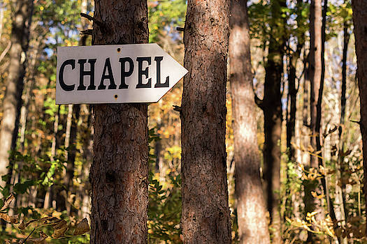 Going To The Chapel  by Terry DeLuco