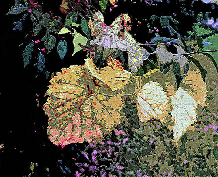 Gold Leaf by Mindy Newman
