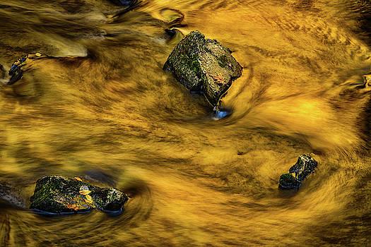 Gold Water by Jeffrey Klug