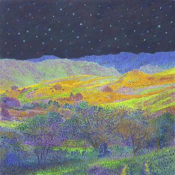 Golden Dakota Midnight by Cris Fulton
