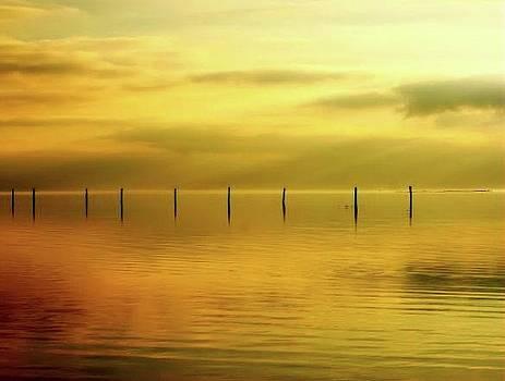 Golden by Eagle Finegan