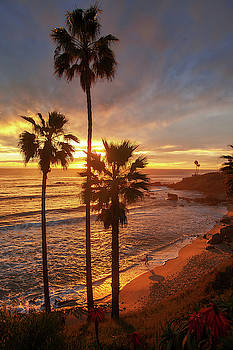 Cliff Wassmann - Golden Hour along Heisler Park Trail
