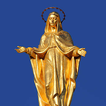 Golden Maria by Christine Buckley
