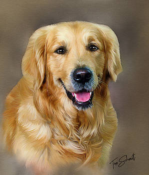Golden Retriever by Tom Schmidt