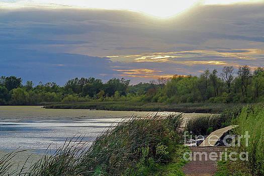 Golden Sunset over Wetland by Susan Rydberg