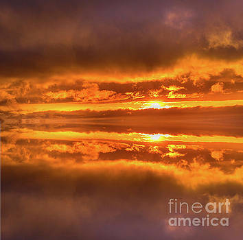 Golden Sunset Reflections by Alana Ranney