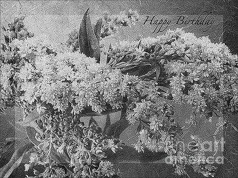 Goldenrod Happy Birthday Greeting BW by Mona Stut