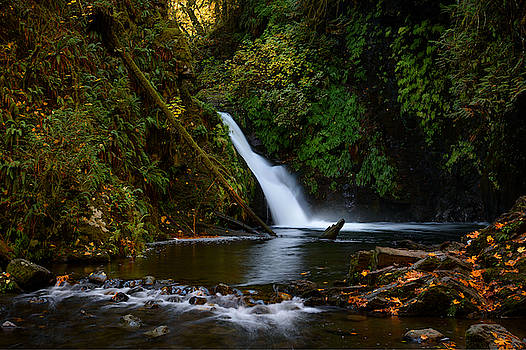 Goldstream Falls by Keith Boone