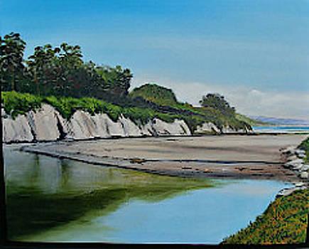 Goleta Beach    At Rest by Jeffrey Campbell