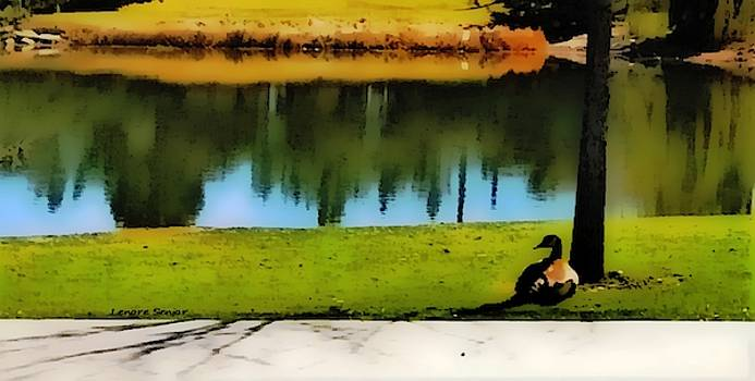 Goose at Rest by Lenore Senior