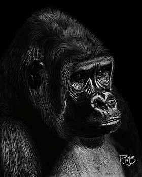 Gorilla My Dreams by Robert Bovasso