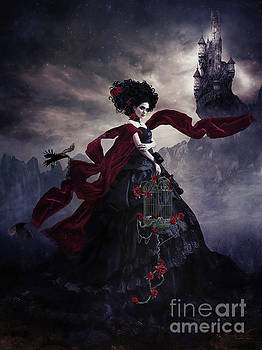 Gothic Bride  by Shanina Conway