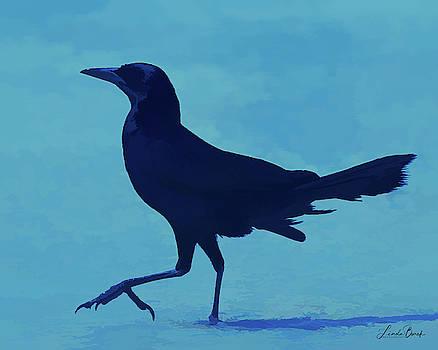 Grackle in Blue by Linda Burek