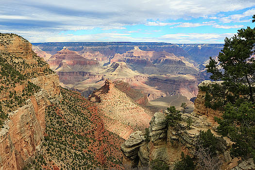 Grand Canyon View 3 by Dawn Richards