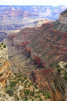 Grand Canyon View 4 by Dawn Richards
