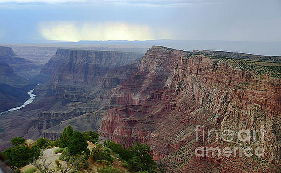 Grand Canyon View from Desert View Watchtower by Debby Pueschel