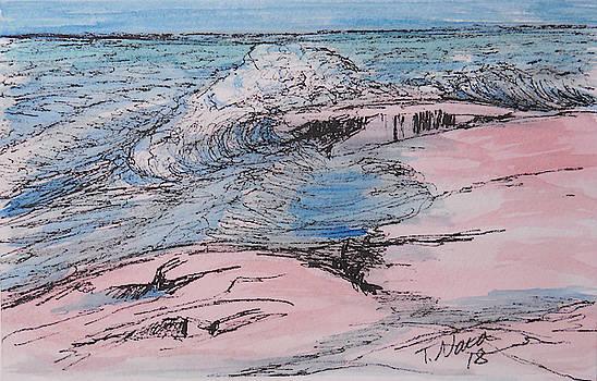 Grand Marais. Artist's Point by Tammy Nara